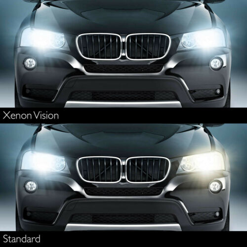 Philips Xenon Vision 42402VIC1 D4S Xenon HID Bulb Single