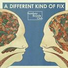 A Different Kind Of Fix von Bombay Bicycle Club (2011)