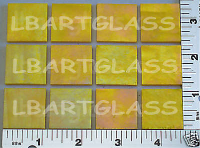 """12 SUNFLOWER 1//2/"""" IRID UROBOROS GLASS SQUARES 90 COE"""