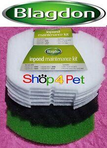Inpond-Maintenance-Kit-for-Blagdon-5-in-1-6000-pond-filter-1x-Foam-SET-6x-pads