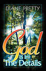 God is in the Details by Diane Pretty (Paperback, 2008)