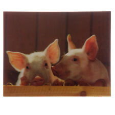 3D Bild, Schweine