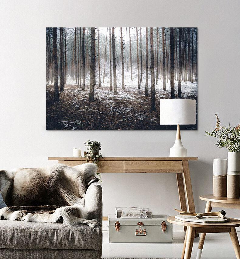 3D Helle Weiß Schnee Wald 876  Fototapeten Wandbild BildTapete AJSTORE DE Lemon | Diversified In Packaging  | Der neueste Stil  | Schönes Aussehen