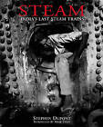Steam: India's Last Steam Trains by Mark Tully, Stephen Dupont (Hardback, 1999)