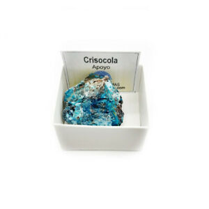 Crisocola-Piedra-Natural-Semipreciosa-3-4-cm-en-caja-de-coleccion