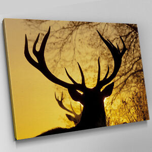 Superior Image Is Loading A548 Sunset Silhouette Stag Deer Canvas Wall Art