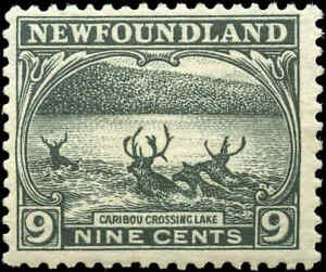 1923-24-Canada-Mint-NH-Newfoundland-9c-F-Scott-138-Pictorial-Issue-Stamp