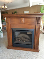 Electric Fireplace Winnipeg Manitoba Preview