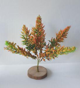 1 Mini Baum Baumchen Minigarten Bluhend Gutschein Geldgeschenk