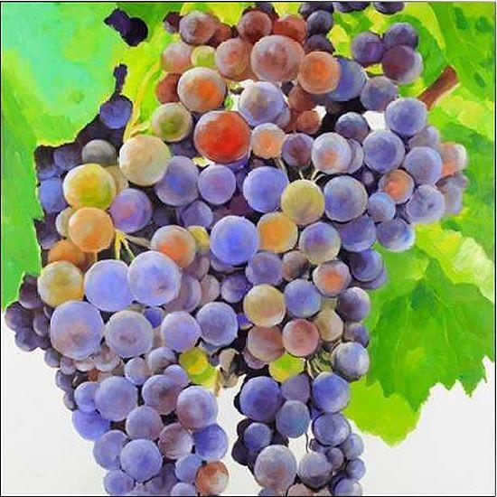Atelier B  Bunch of Grapes Keilrahmen-Bild Leinwand Trauben Wein bunt Früchte