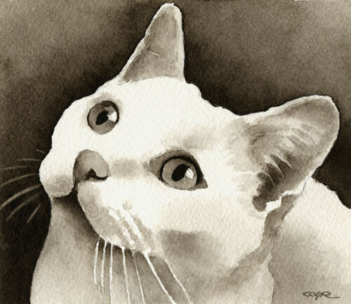 White Cat Art Print Sepia Watercolor 11 x 14 by Artist DJR