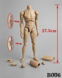 ZY TOYS 1/6 Narrow Shoulder Male Figure Body W/ NECK Fit