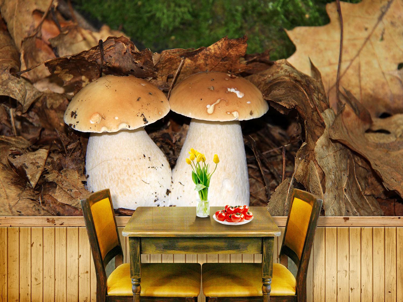 3D Paar Pilze 853 Tapete Wandgemälde Tapete Tapeten Bild Familie DE Summer