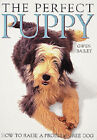The Perfect Puppy by Gwen Bailey (Paperback, 1995)