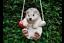 Hanging Monkey Cat Pig Sloth Garden Sculpture Resin Home Decor Ornament GIFT New