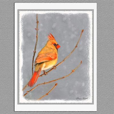 8x8 CARDINAL Bird Wildlife Nature Signed Art PRINT of Original Oil Painting VERN