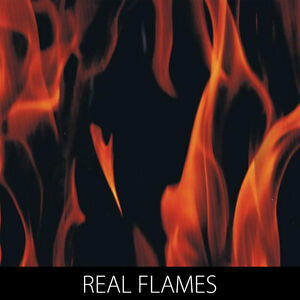 Real Flames Hydrographic Film dip stick hydro show motorcycle