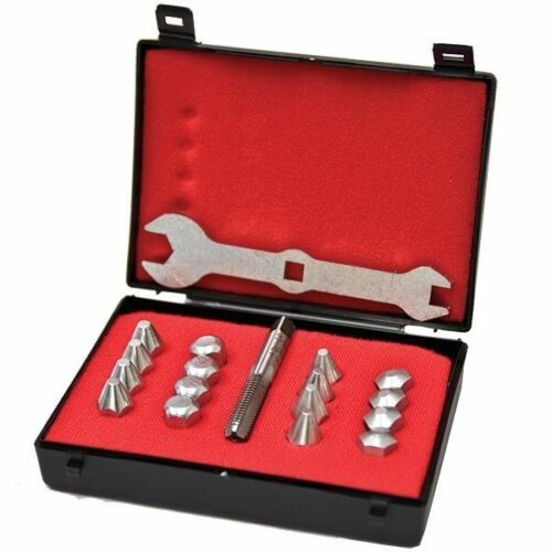 Liveryman Clous Boîte de présentation 16 Rivets Set Avec robinet /& Clé Horse Shoe Wear