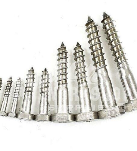 16mm A2 Hexágono Cabeza Hexagonal Tornillo De Acero Inoxidable Entrenador Tornillos Madera perno Lag DIN571 M16