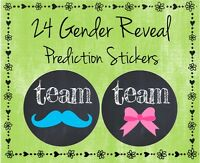 24 Gender Reveal Baby Shower - Guess Boy Or Girl Team Pink Or Blue - 2 Glossy