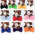 Mens Solid Color Tuxedo Classic Bowtie Pre Tied Wedding Satin Bow Tie Neckwear~~