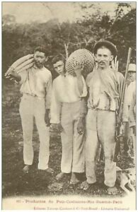 bresil-n-35436-productos-do-paiz-costumes-rio-guama-para-belem-tavares-cardos