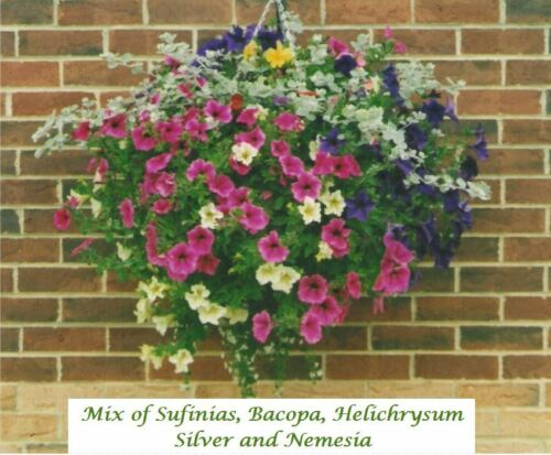 Just Cut to Size 6 Pack 14 inch Hanging Basket Liners - Easy to use Liner