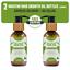 Hair-Growth-Oil-100-Natural-Organic-Herb-Treatment-For-All-Hair-Types-100-amp-200ml thumbnail 24