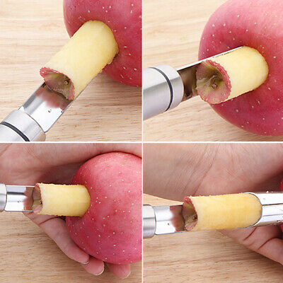 Stainless Steel Apple Seed Corer Fruit Remover Easy Twist Kitchen Tool  Gadget GX | eBay