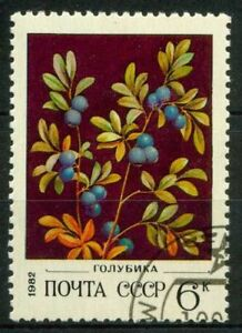 Russia-1982-SG-5211-Usato-100