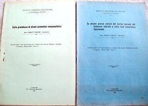 1930-ZOOLOGIA-BIOLOGIA-ISTITUTO-ANATOMICO-DI-CAGLIARI-DIRETTO-DA-L-CASTALDI