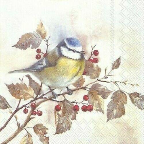 4 papel de Almuerzo Servilletas Para Decoupage Mesa de fiesta Artesanal Pájaro Vintage en el árbol