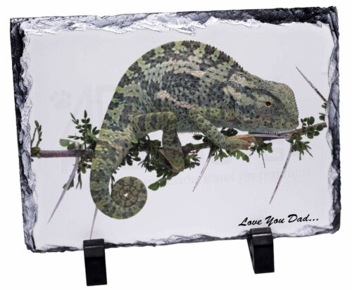Chameleon Lizard /'Love You Dad/' Photo Slate Christmas Gift Ornament DAD-147SL