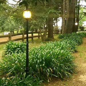 Image Is Loading BLACK FEDERATION GARDEN LAMP POST POOL DRIVEWAY OUTDOOR