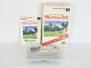 WAIALAE-NO-KISEKI-Ref-ccc-Super-Famicom-Nintendo-Japan-Game-sf