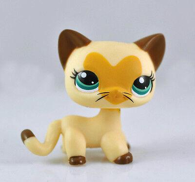 Littlest Pet Shop Cat Rare Collection Child Girl Figure Cute Toy Loose LPS641