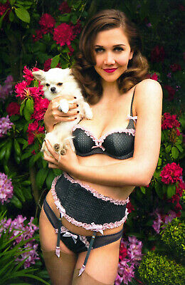 Maggie Gyllenhaal 8 x 10 8x10 GLOSSY Photo Picture IMAGE #2