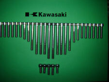 Kawasaki Z500 Z550 GPz550 Motore SS Acciaio inox Kit Vite A Brugola