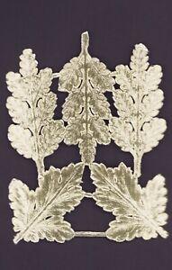 Alte-gold-gepraegte-Dresdner-Pappe-Ornamente-fuer-Eichenlaub-DIE-CUT-SCRAPS
