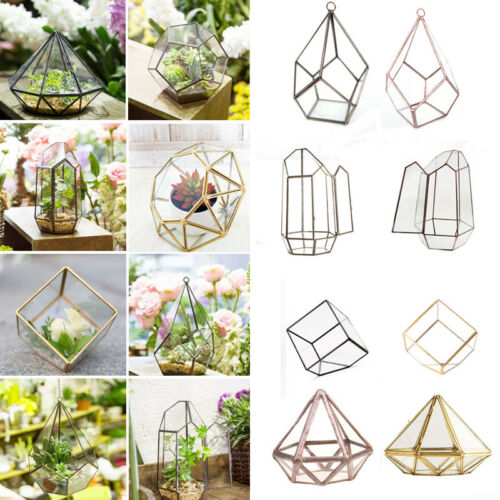 Metal Glass Geometric Terrarium Succulent Plant Planter Pot Box Tea Light Holder