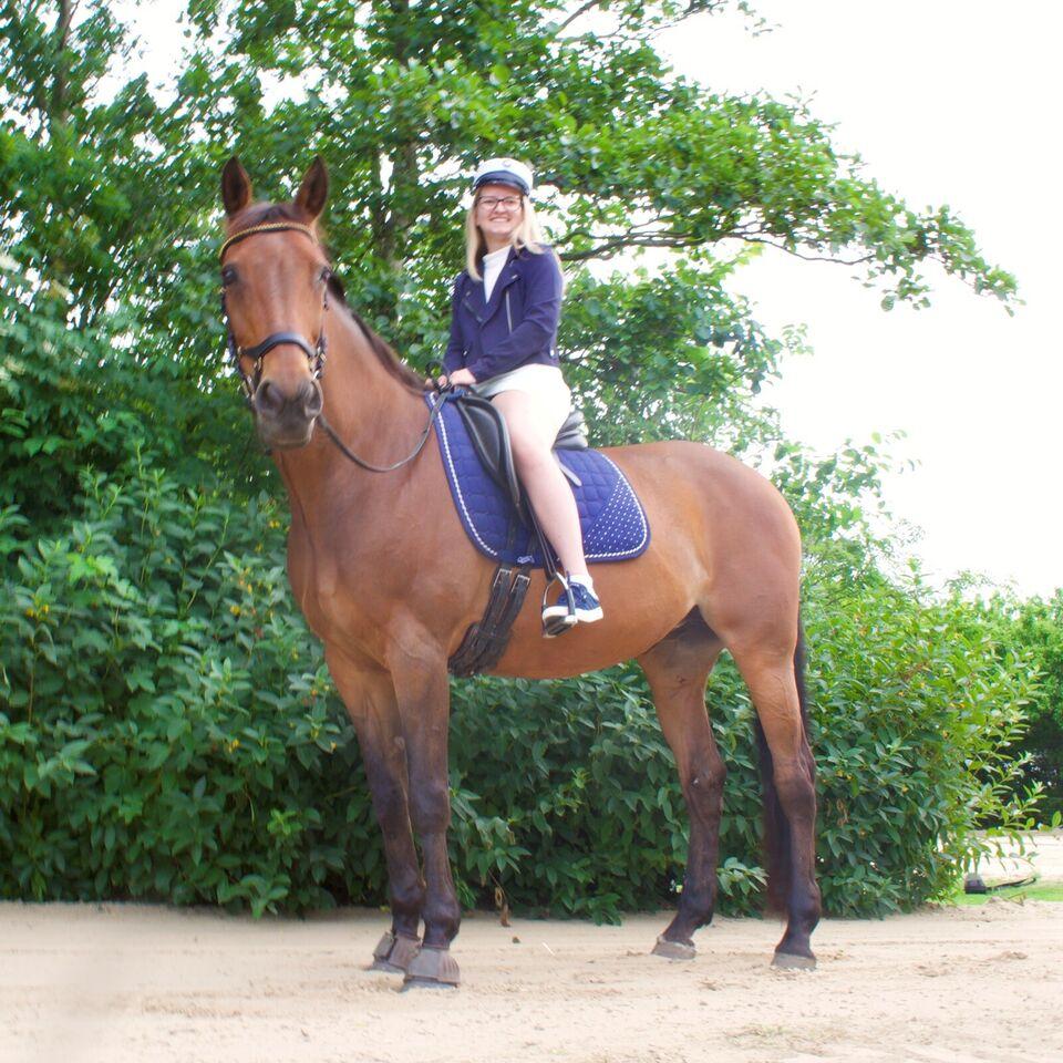 Blanding, hoppe, 16 år