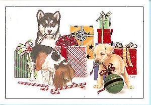Husky Christmas Cards.Details About Husky Beagle Lab Labrador Retriever Christmas Cards Box Of 18