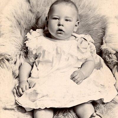 1890s Cute Chubby Baby Cdv Photo Swansea Carte De Visite Victorian Children Ebay