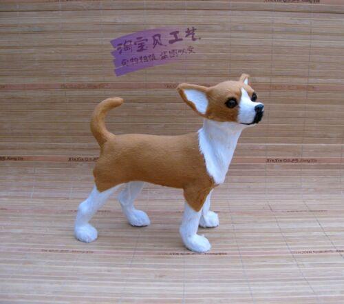 simulation standing dog model resin/&fur chihuahua model doll gift 22x9x21cm