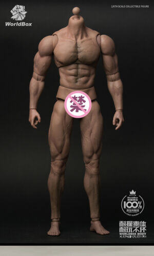 """1//6 Male Standard Muscle Body WorldBox AT027 12/"""" Man Action Figure Model Toy"""
