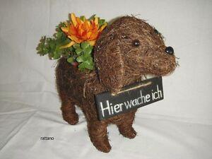 Deko-Hund-zum-Bepflanzen-aus-Rattan-Pflanzgefaess-Dekofigur-Gartendeko