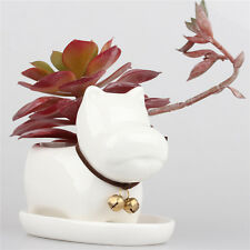 Kawaii Dog Ceramic Succulent Plant Flower Pot Garden Porcelain Groceries Planter
