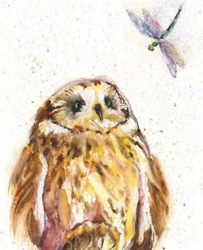 HELEN ROSE Limited Print of my Owl and Dragonfly insect art watercolour 413