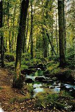 BR13709 Huelgoat la Riviere d Argent dans les bois france