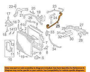 BMW OEM 00-03 X5 Radiator Coolant-Recovery Tank Bottle Overflow Hose
